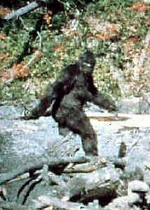 Unexplained Mystery #1: Bigfoot
