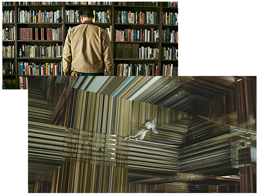 The Interstellar Bookcase in Three and Five Dimensions