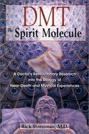 DMT: 'The Spirit Molecule' Explained