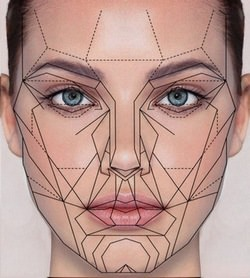 The Golden Ratio and The Human Face