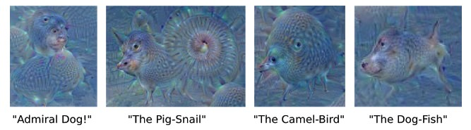 Images Created by Google's Neural Network