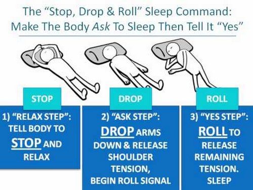 The Stop, Drop and Roll Sleep Command for Wake Induced Lucid